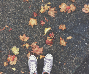 autumn, converse, and seasons image