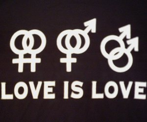 gay, love, and heterosexual image