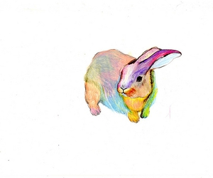 rabbit, bunny, and colors image
