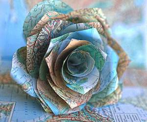 rose and travel image