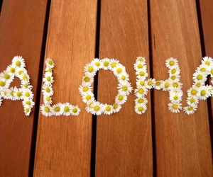 Aloha, flowers, and summer image