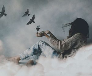 bird, clouds, and Dream image