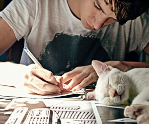 boys, study, and cats image