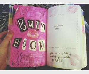 burn book, mean girls, and wreck this journal image