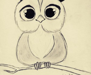 black and white, draw, and owl image