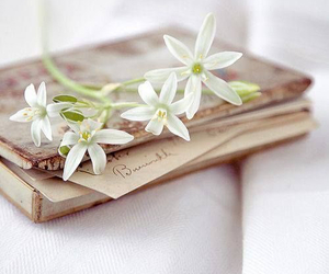 flowers, book, and vintage image