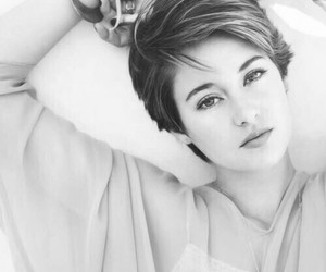 Shailene Woodley, divergent, and the fault in our stars image