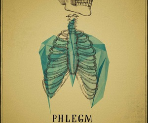 skeleton and phlegm image