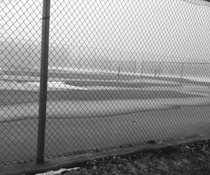 background, fog, and sports image