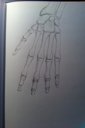 drawing, drawings, and hand image