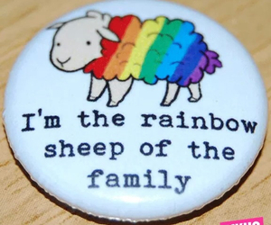 funny, love, and rainbow image