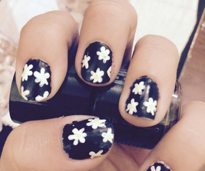 black, daisy, and design image