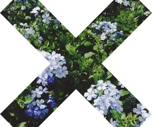 flowers, x, and floral image
