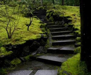 garden, green, and japanese garden image