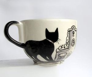 cat and cup image