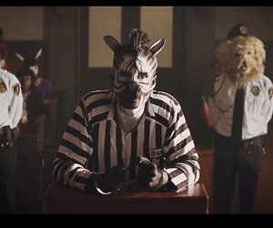 judge, music, and zebra image