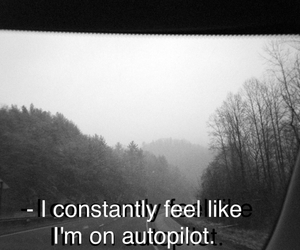 feel, phrases, and autopilot image