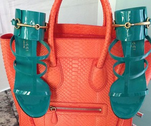 gucci and celine image