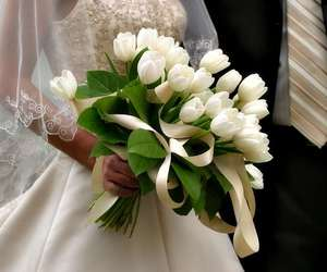 tulips, flowers, and wedding image