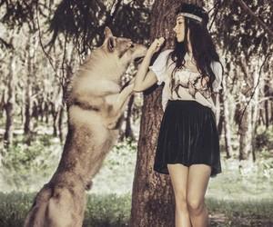wolf, girl, and animal image