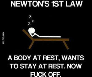 funny, newton, and haha image