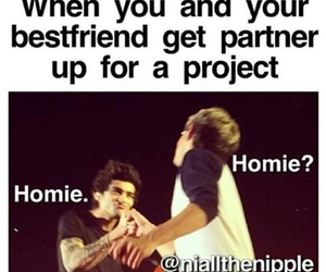 lol, true, and niall horan image