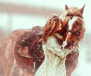 horse, winter, and girl image