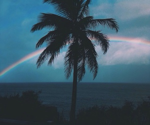 rainbow, beach, and palm trees image