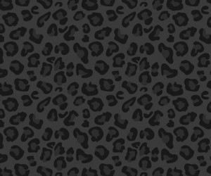 animal print, leopard, and wallpappers image