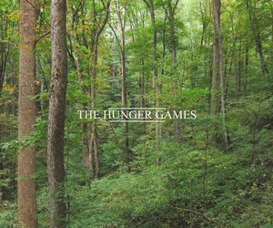 the hunger games, book, and forest image