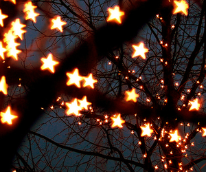 stars, light, and tree image