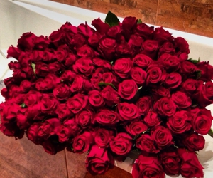 roses, red, and flowers image