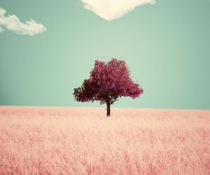 tree, heart, and pink image