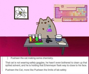 pusheen, cat, and funny image