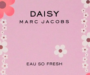 daisy, wallpaper, and marc jacobs image