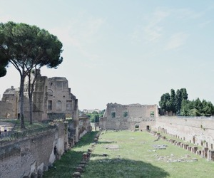 italy, rome, and summer image