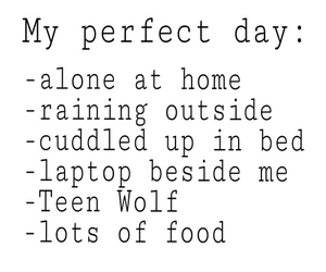 perfect, day, and teen wolf image
