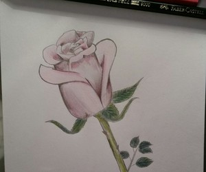 drawing, flower, and green image