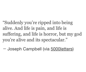 alive and joseph campbell image