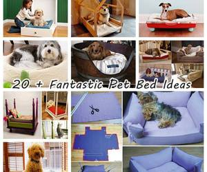 diy, pet bed, and home idea image