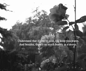 beauty, storm, and true image