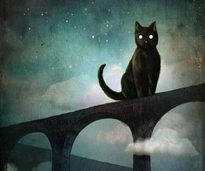 art, cat, and night image