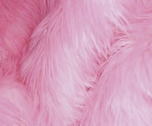 pretty, fur, and pink image