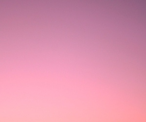 sunset, pink, and summer image
