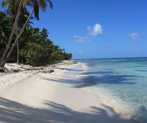 Dominican Republic and saona island image