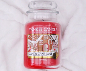 yankee candle, christmas, and candy cane lane image