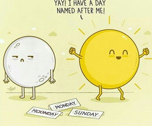funny, sun, and Sunday image