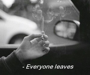 black and white, leave, and smoke image