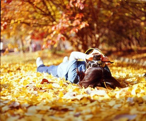 autumn, yellow, and girl image