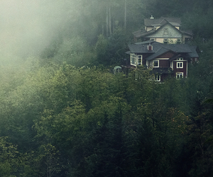 house, nature, and fog image